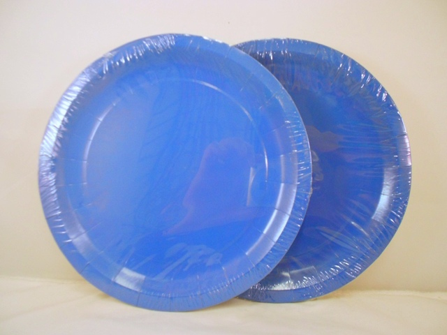 S5539: 12Pk 9 Inch Blue Paper Plates